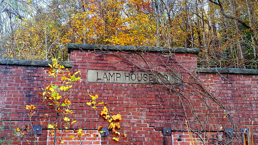 Lamp House No. 1 by Ally White