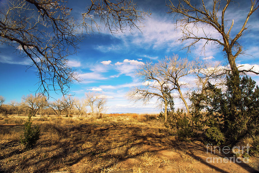 Bitner Photograph - Land Of Enchantment by Mariola Bitner