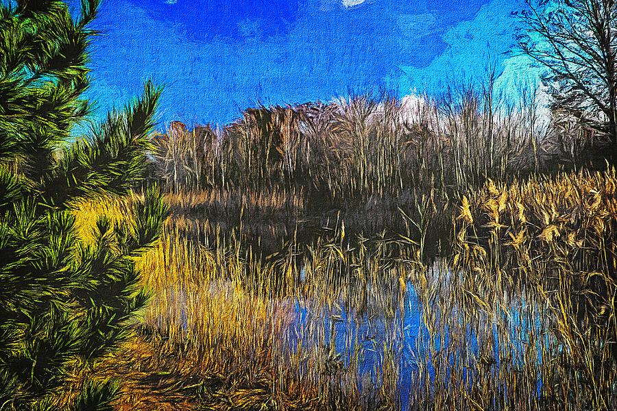 Landscape 30 by Cliff Guy