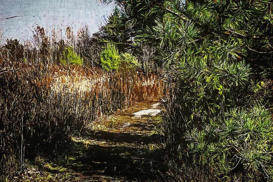 Landscape 32 by Cliff Guy