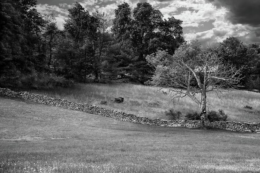 Landscape - Hurley, N.Y. by Tom Romeo
