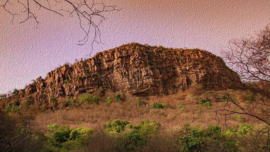 Tourism Photograph - Landscape In Ranthambhor  by Manjot Singh Sachdeva