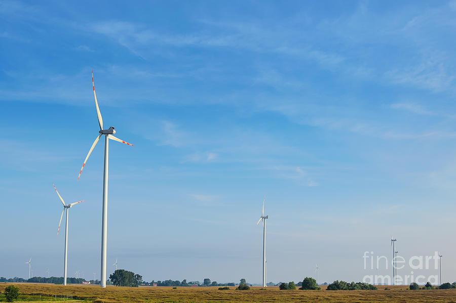 Landscape Of Wind Farms Photograph