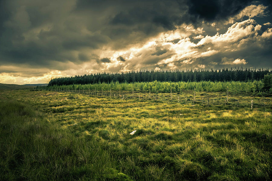 Highland Photograph - Landscape View by Alister Harper