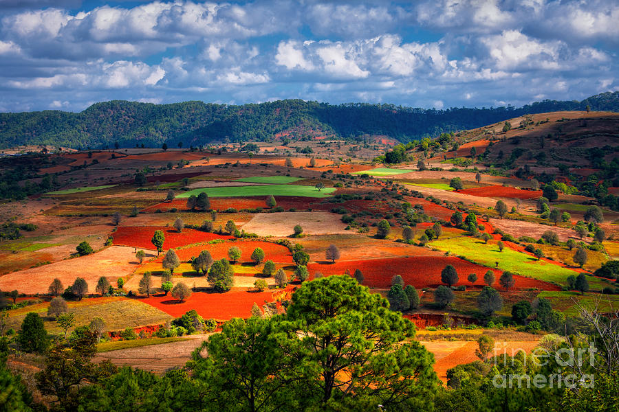 Container Photograph - Landscapes Of Shan State, Myanmar by Yury Birukov