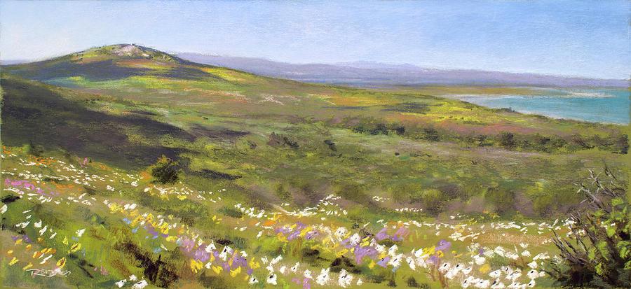 Langebaan Spring by Christopher Reid