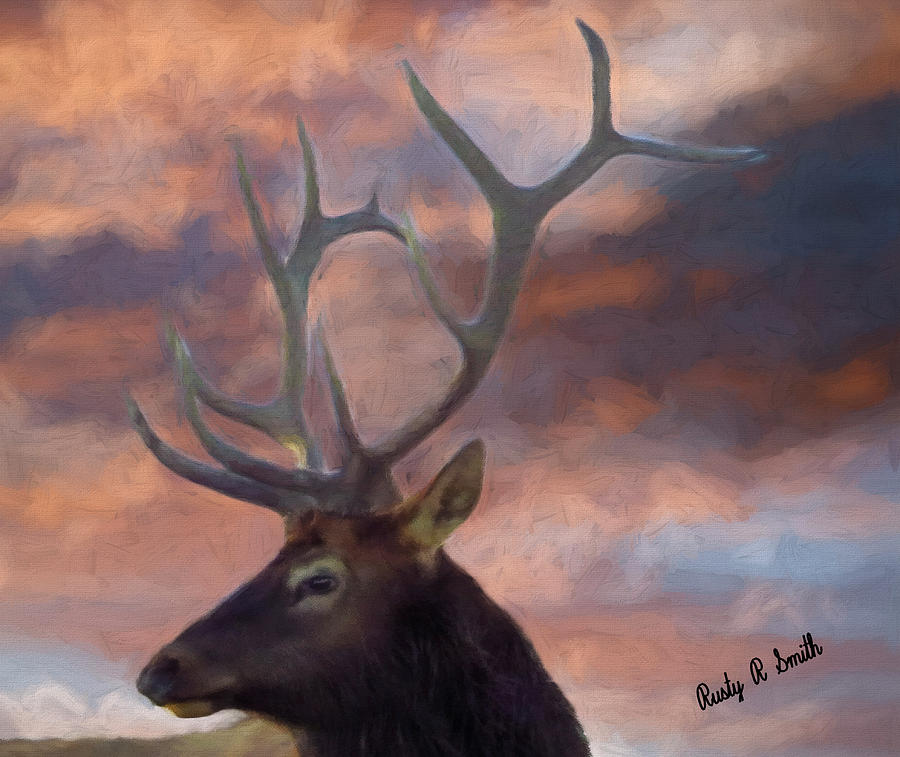 Large bull elk head portrait by Rusty R Smith