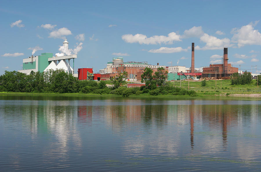 Large Pulp And Paper Industry Photograph by Buzbuzzer