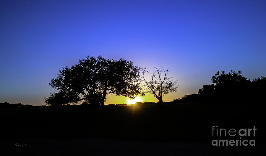 Last Light Texas Hill Country Paradise Canyon Sunset 8053B by Ricardos Creations