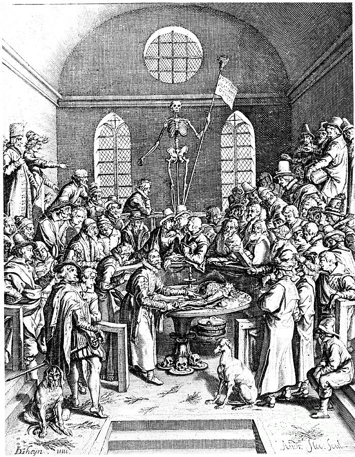 Late 16th Century Anatomy Theatre Drawing by Print Collector