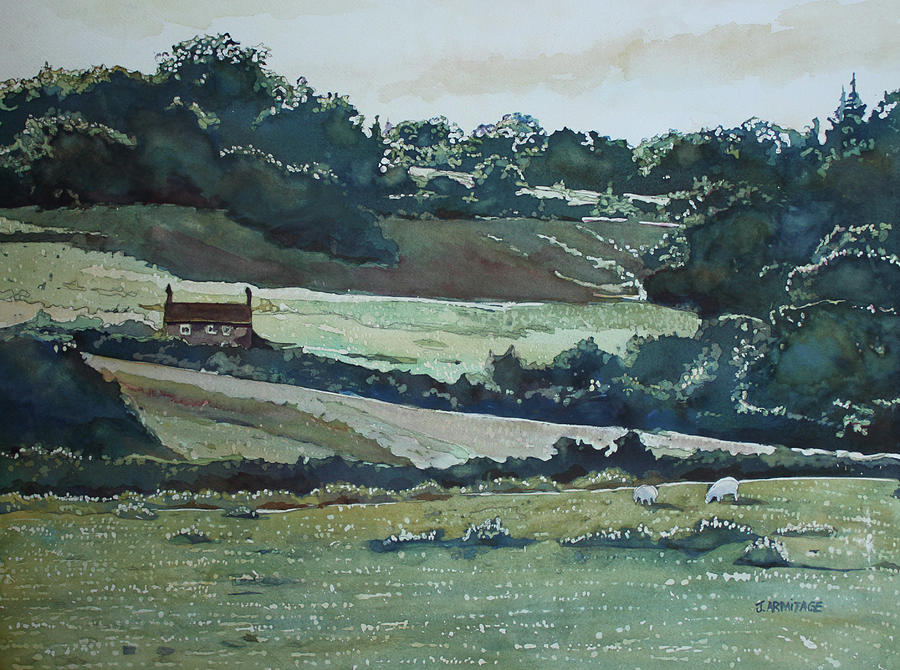 Late Afternoon Denbighshire by Jenny Armitage
