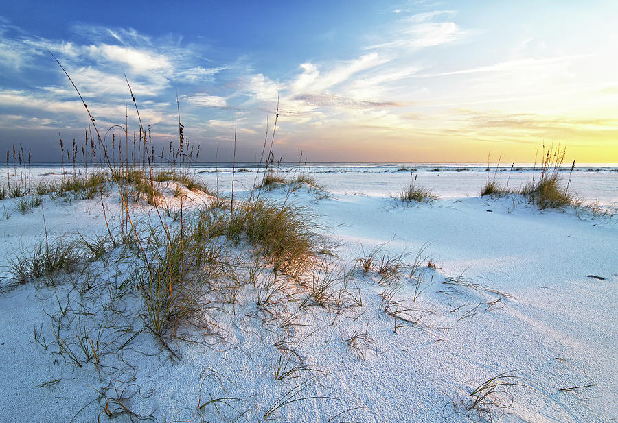 Late Afternoon on the Beach by Bill Chambers