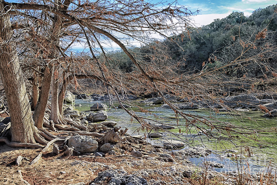 Late Autumn On The Pedernales River Photograph