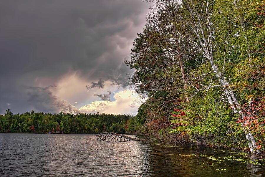 Late Summer Shades On Buck Lake by Dale Kauzlaric