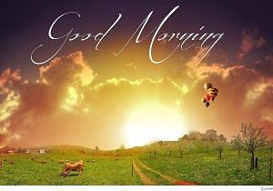 Latest Good Morning Images Download
