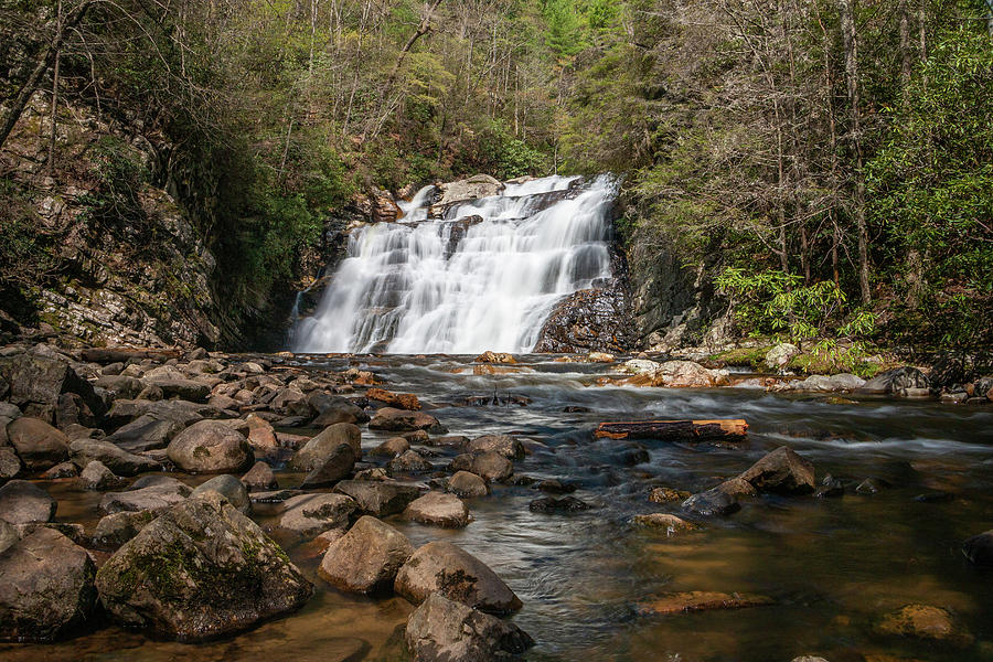 Appalachian Trail Photograph - Laurel Falls In Spring I by Jeff Severson