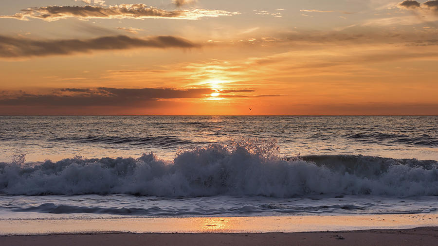 Lavallette Beach New Jersey Sunrise by Terry DeLuco