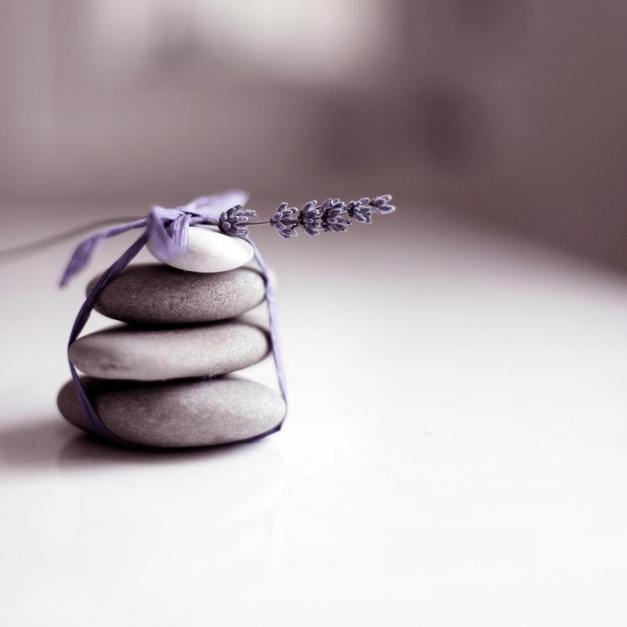 Lavender Still Life Photograph by Tjasam