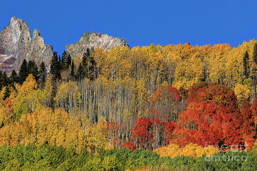 Layers of Fall by Jim Garrison