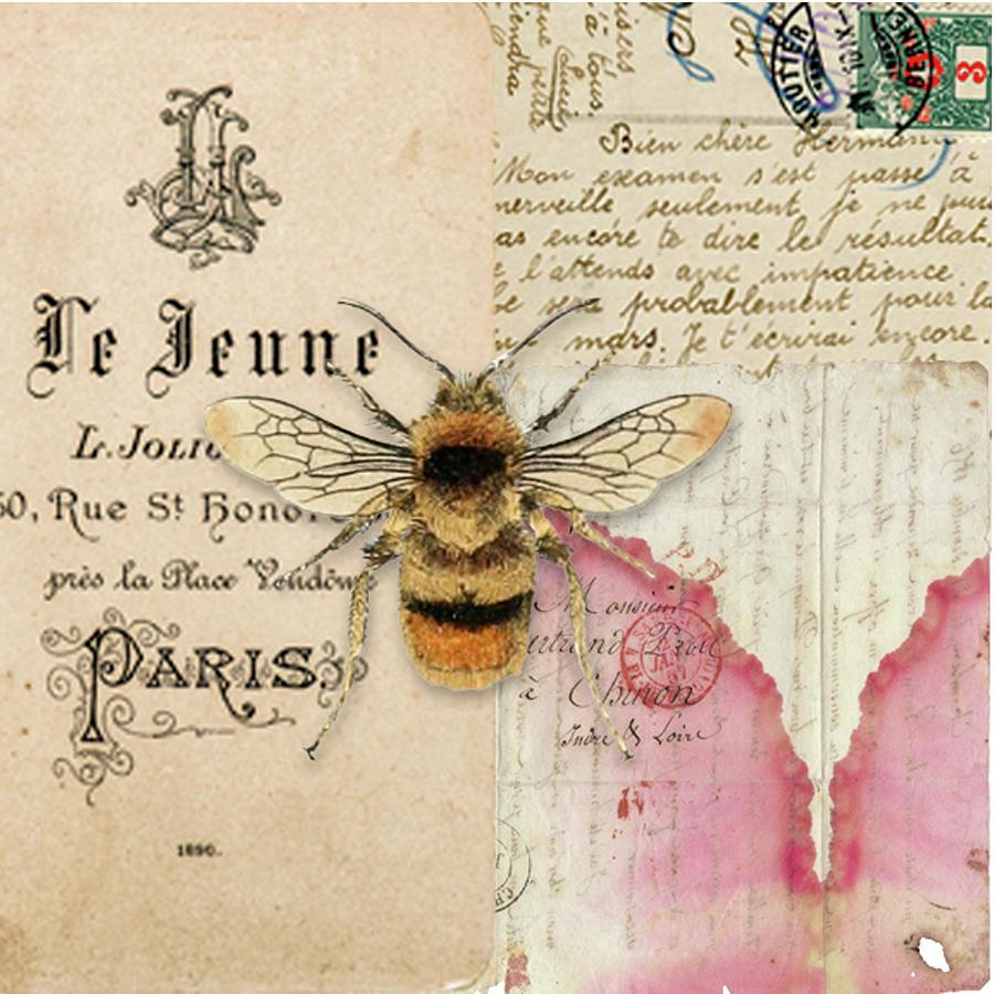 Collage Digital Art - Le Jeune by Lynne Larkin