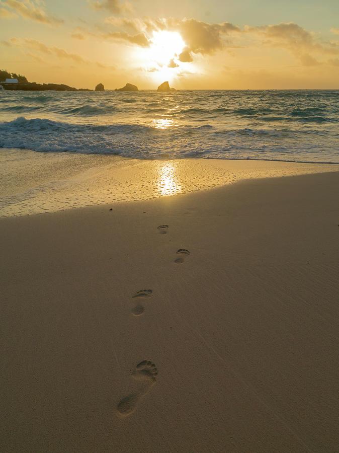Beach Photograph - Leading To The Light Coastal Sunrise by Betsy Knapp