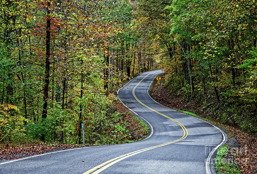 Leaf Peeping Tennessee Photograph