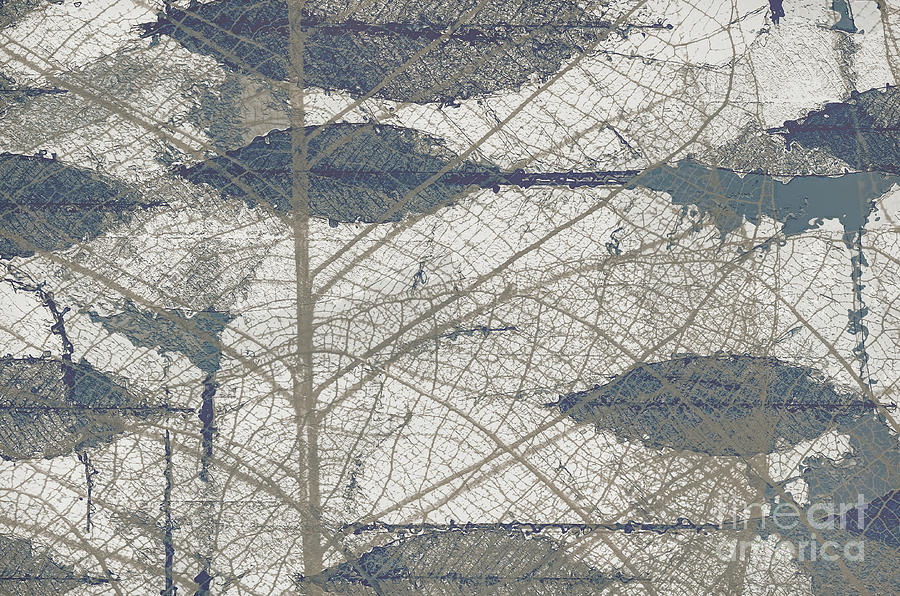 Leaf Skeletons ..abstract by Elaine Manley