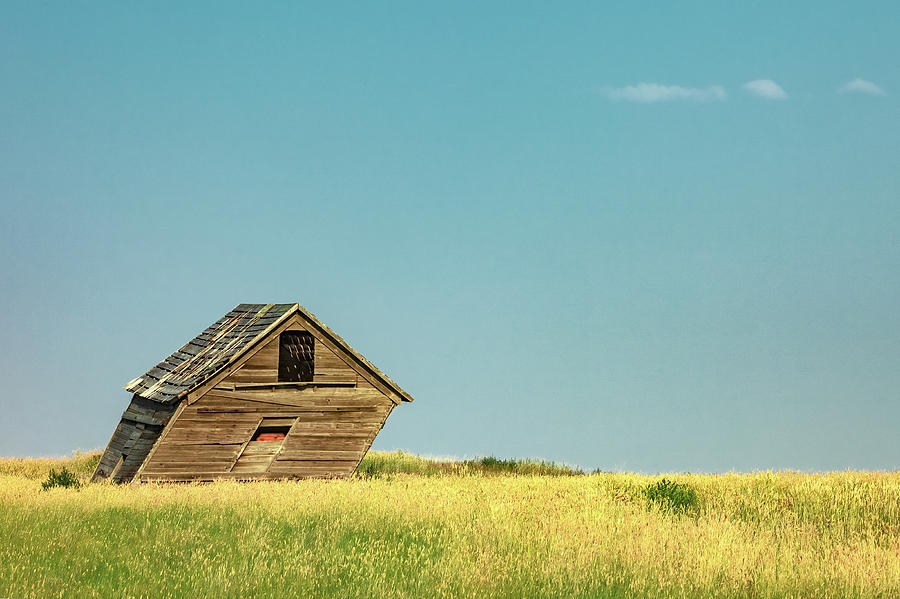 Shed Photograph - Leaning Into The Wind by Todd Klassy