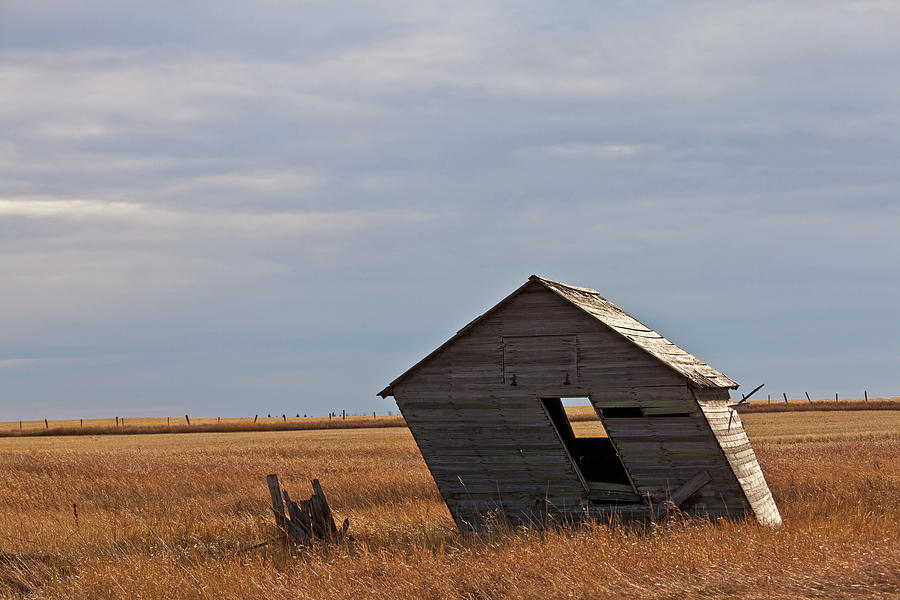Leaning Shed Photograph by Imaginegolf