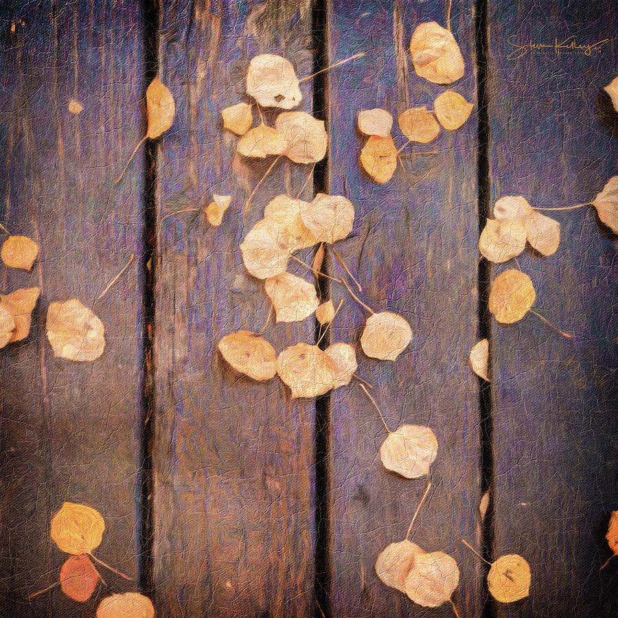Leaves on Planks by Steve Kelley
