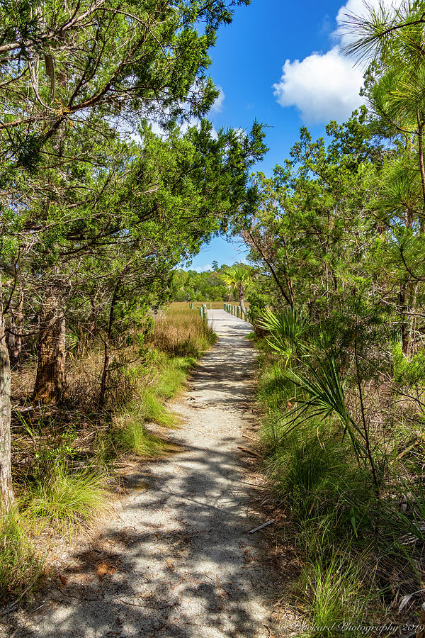 Leaving Nature Island back to the main park area on wide boardwa by Timothy Pinckard