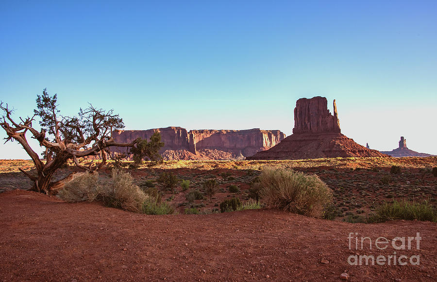 Monument Valley Photograph - Left Thumb by Mae Wertz