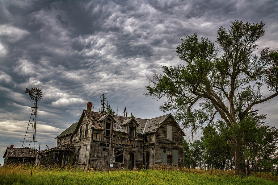 Left to Rot by Darren White