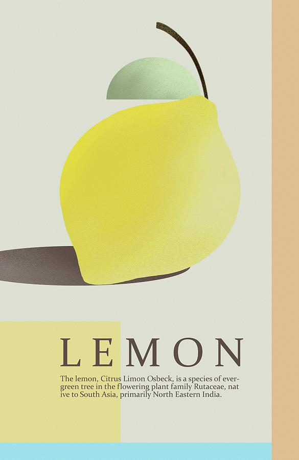 Lemon by Joe Gilronan