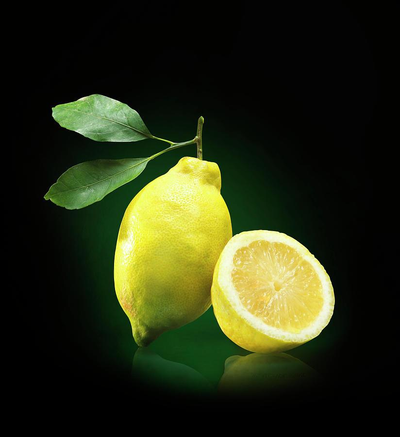 Lemon Slice Photograph by Jeremy Hudson