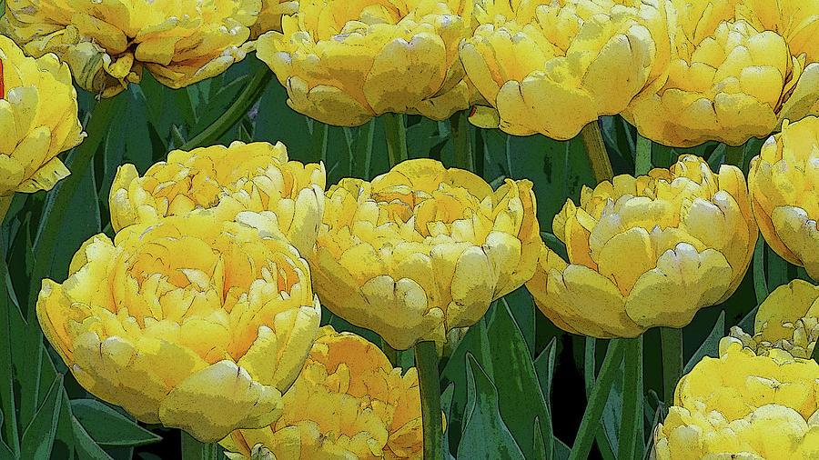 Lemony Yellow Tulips by Kathi Mirto