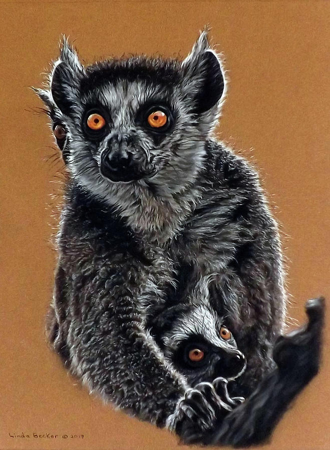 Lemurs by Linda Becker