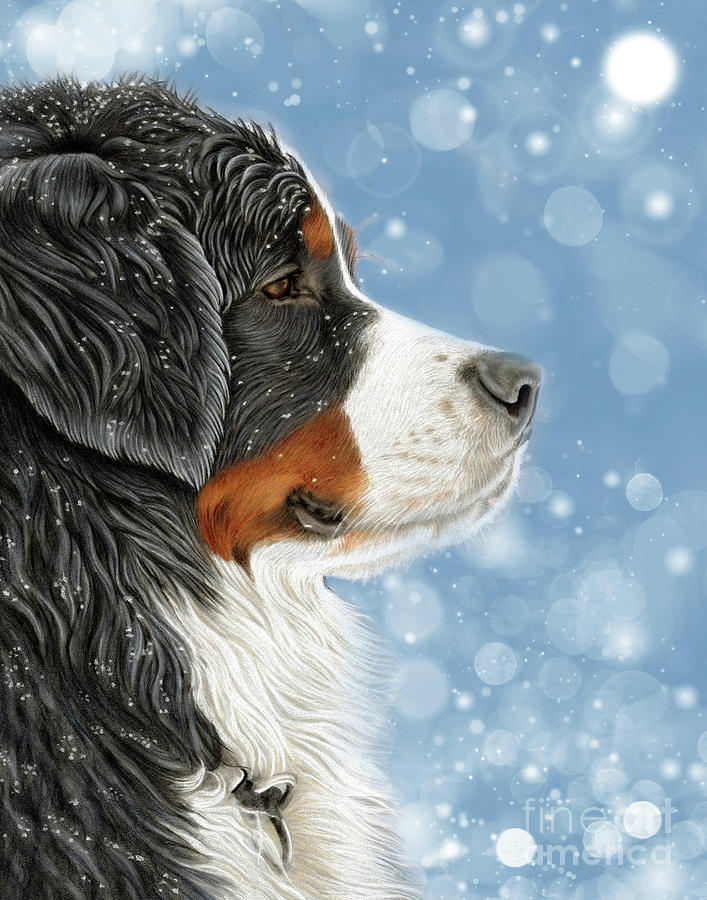 Bernese Mixed Media - Let It Snow - Arctic Blue by Donna Mulley