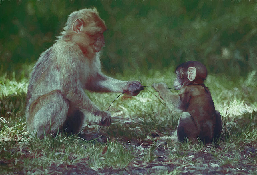 Lets Share - Barbary Macaque - Painting by Ericamaxine Price
