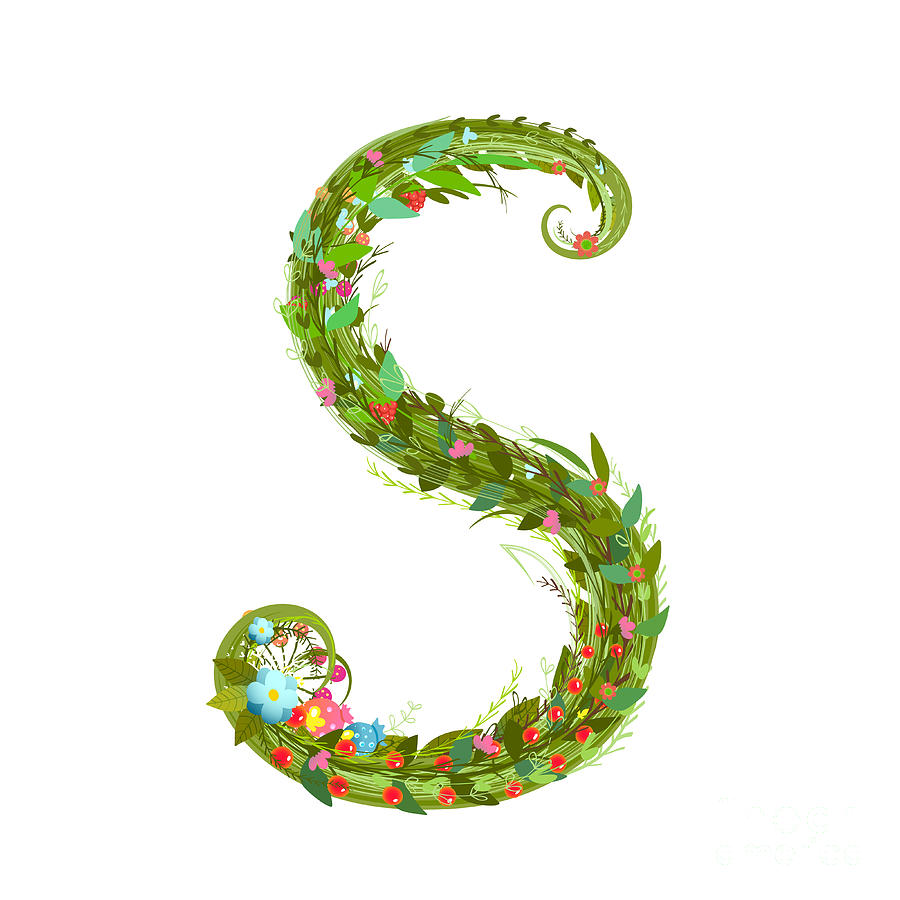 Delicate Digital Art - Letter S Floral Latin Decorative by Popmarleo