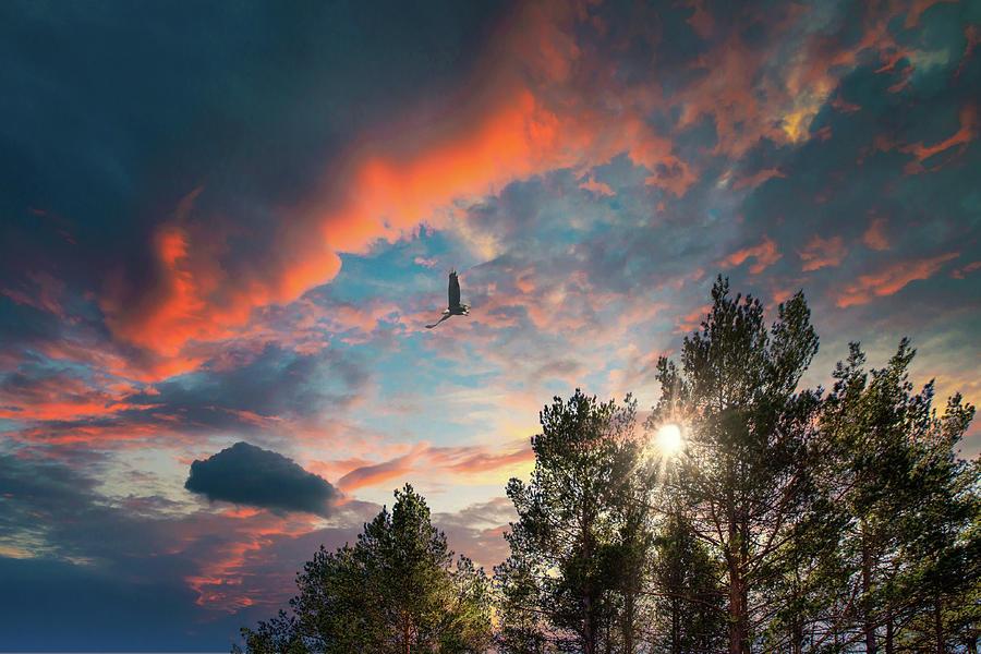 Liberty... by Aleksandrs Drozdovs