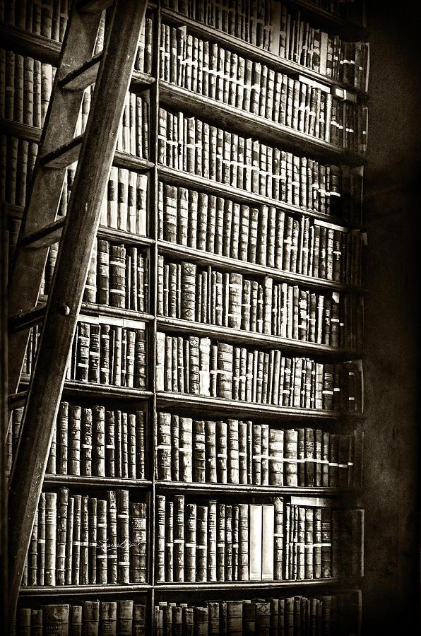 Library Shelves by Sharon Popek
