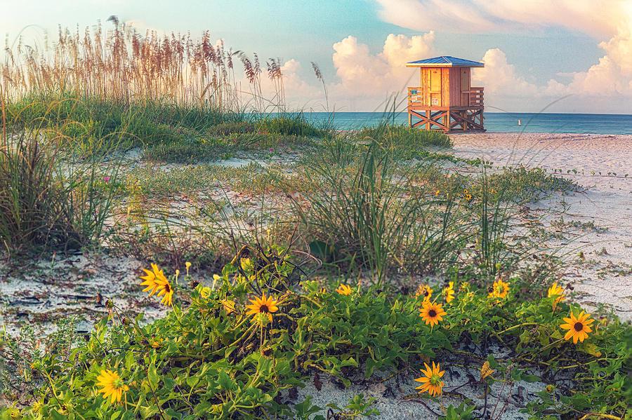 Lido Beach by Rod Best
