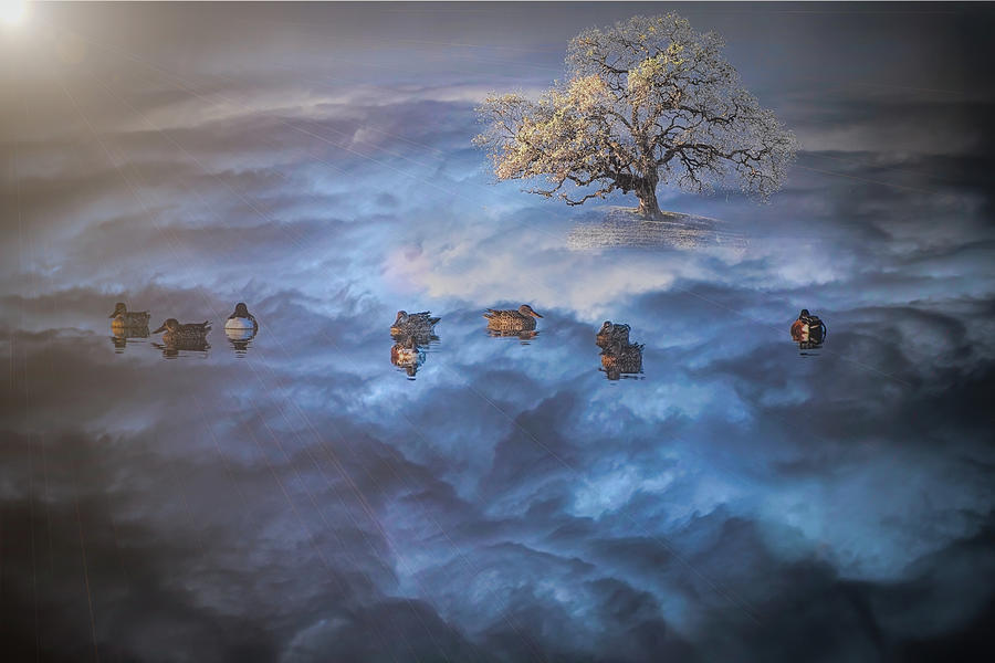 Life Above the Clouds by Mike Gifford