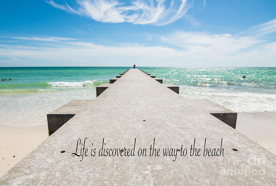 Life is discovered on the way to the beach by Metaphor Photo