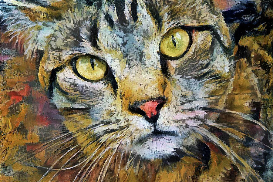 Life of Riley the Tabby Cat by Peggy Collins