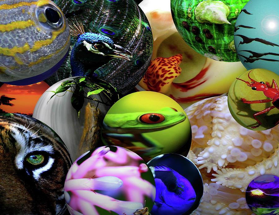 Life On Earth Painting - Life On Earth by Dana Brett Munach