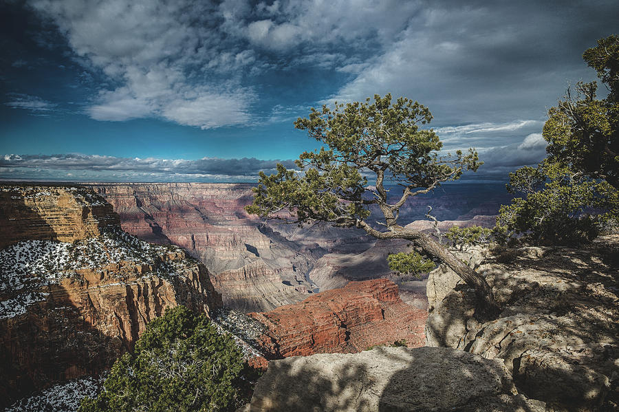 Life on the Edge by Ryan Lima