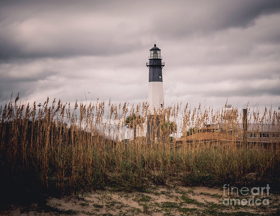 Light on Tybee Island by Nick Zelinsky