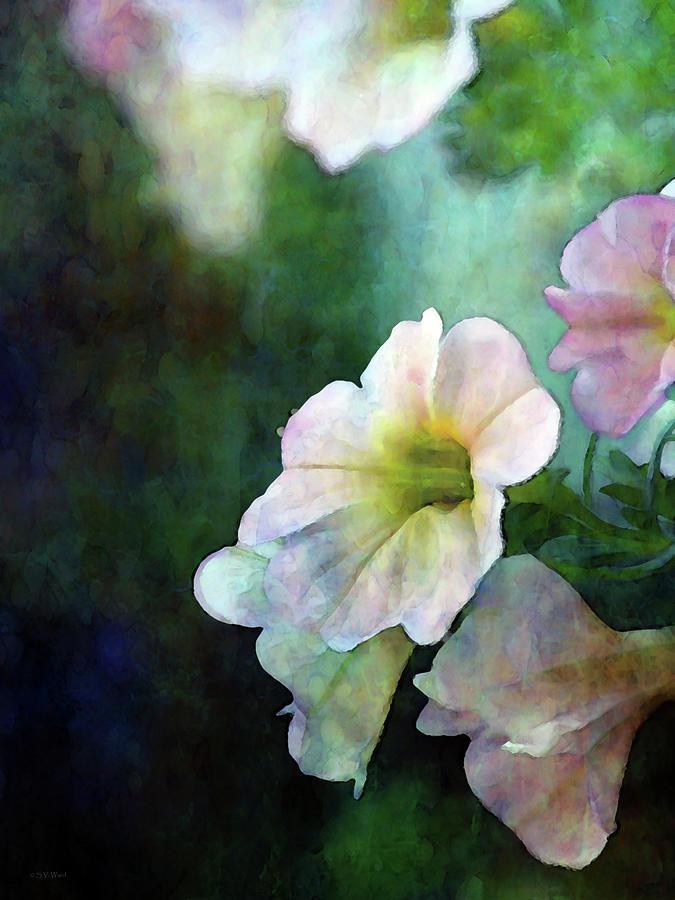 Light Petunias 6600 IDP_2 by Steven Ward